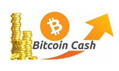 Bullish on bitcoin cash